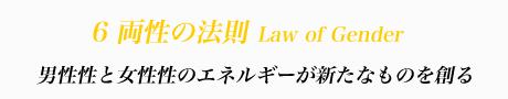 6 両性の法則 Law of Gender 男性性と女性性のエネルギーが新たなものを創る